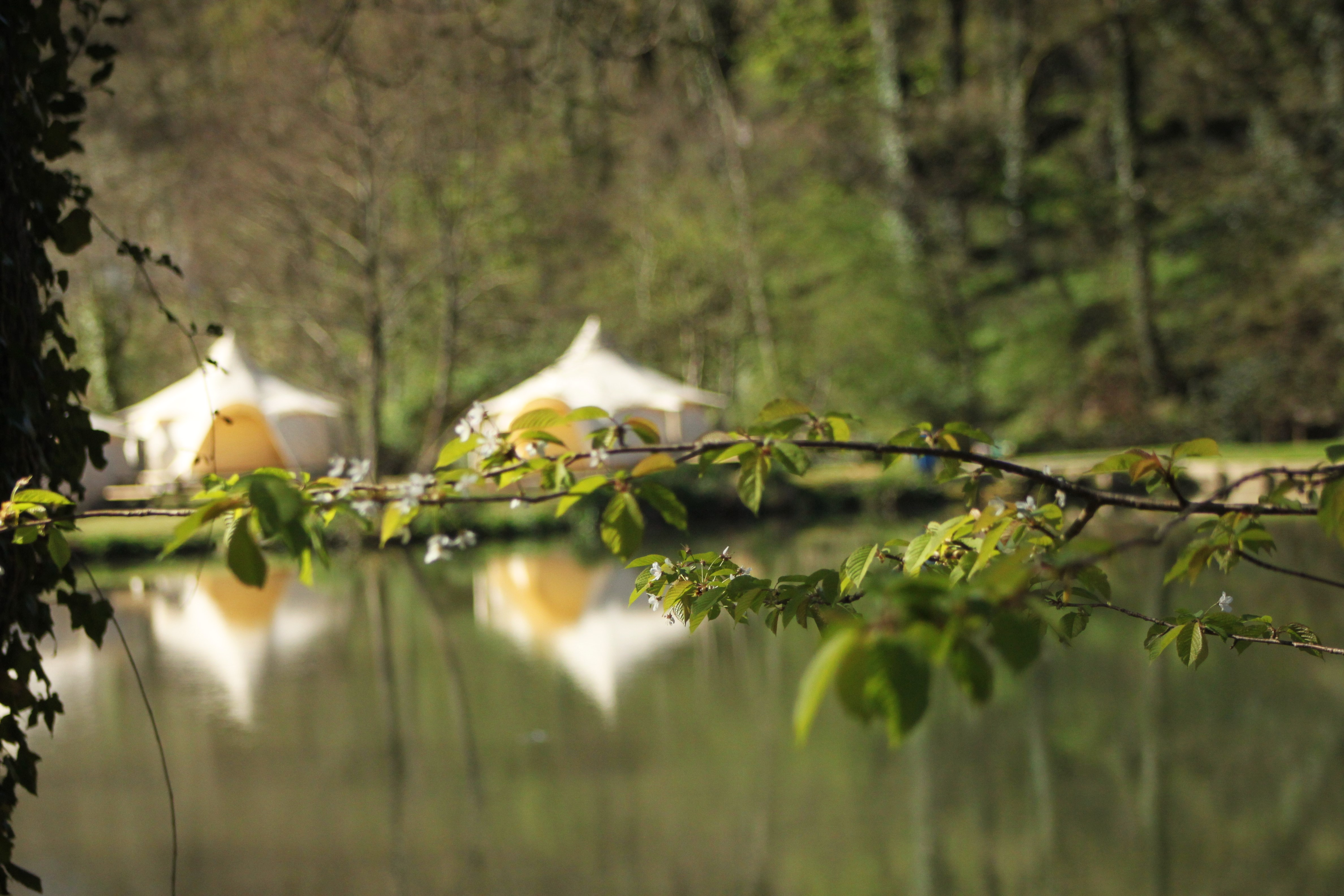 Glamping Gallery